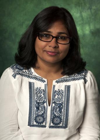 Professor Fahmida Hamid